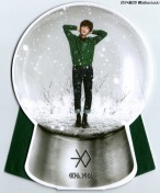 Chanyeol Snow Globe