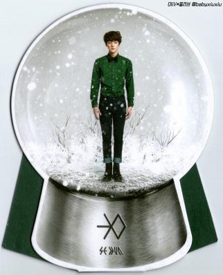 Sehun Snow Globe
