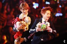 Kris & Xiumin with a lot of stuff animals
