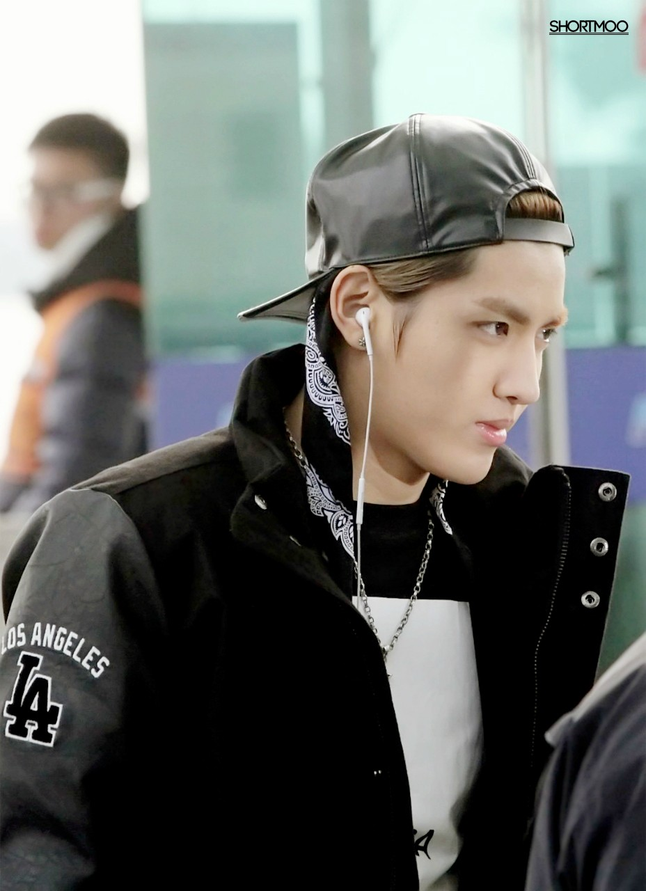 Kris Exo Airport Airport Pictures Exo m